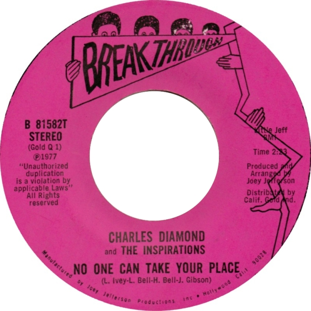 charles-diamond-inspirations-no-one-can-take-your-place